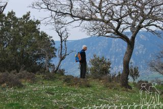 Escursione a Monte Varraro (Benestare)