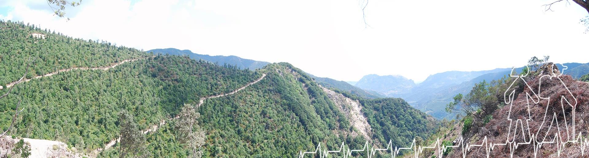 Vertice 11 (Bivongi); Panorama