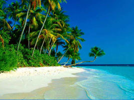 Goa Beach Vacay 4 Days Package