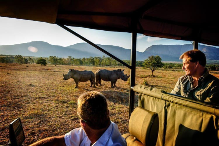 Stunning Cape Town & Ranger Camp - 8 Nights in South Africa