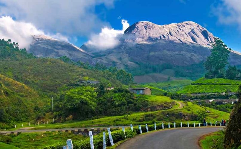 Hills and backwaters of Kerala; 5 Days Holiday Package