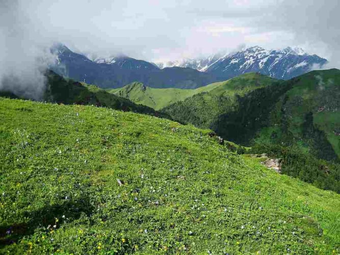 Auli-Gorson Bugyal Trek; Trip from Delhi