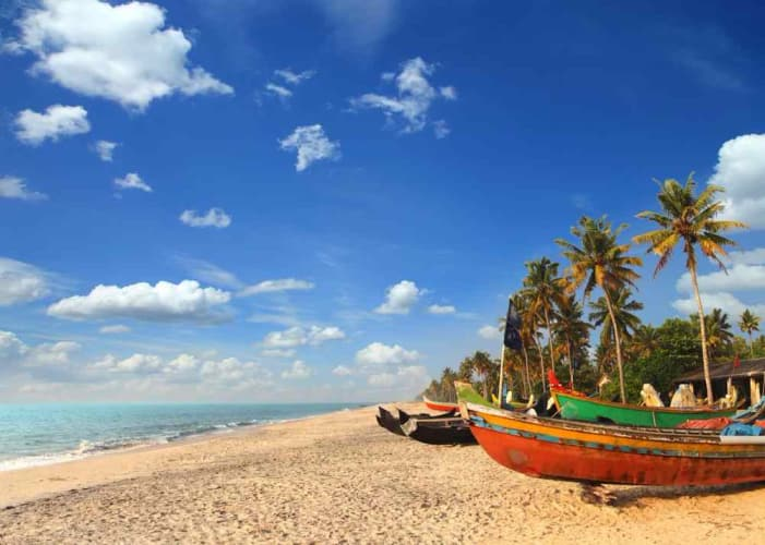 Kerala Backwaters 6 nights Holiday Package