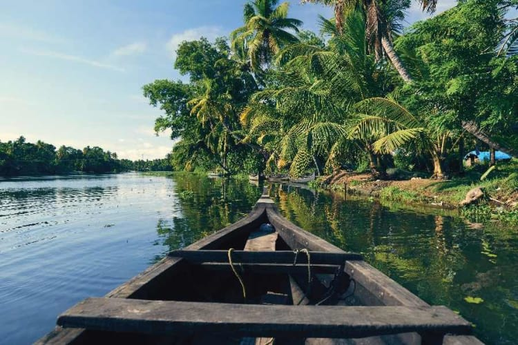 Kerala Honeymoon Tour with Houseboat; 6 Days Package