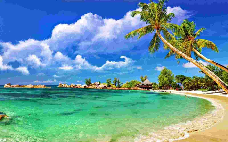 Andaman Beaches this Honeymoon; 6 Days Package