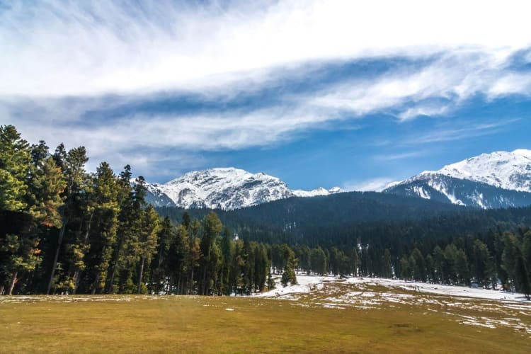 Heavenly Kashmir - 5 Days Tour Package