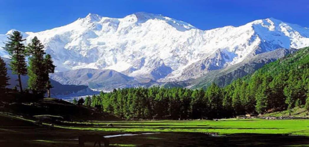 Kashmir Ki Vaadiya; 5 Days Package