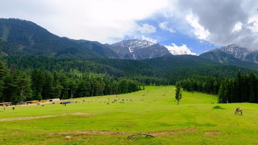 Romantic Kashmir Honeymoon; 5 nights Package