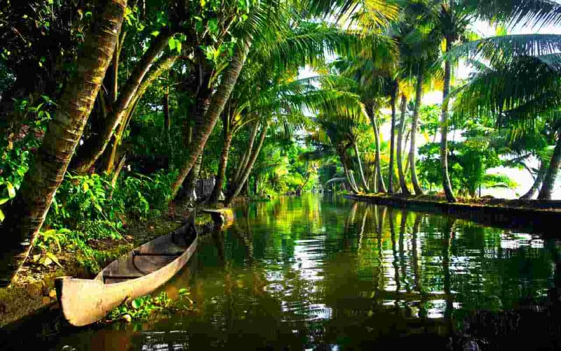 Glimpse of Kerala; 3 Nights