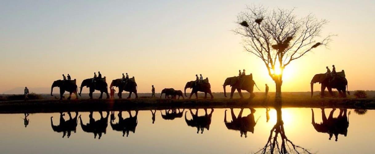 Road trip to Corbett from Delhi; Luxury Stay