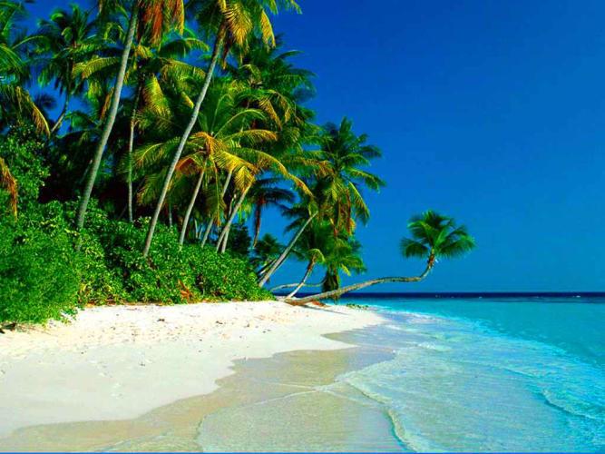 Celebrity Constellation Cruise; Abu Dhabi to Mumbai 8 Days
