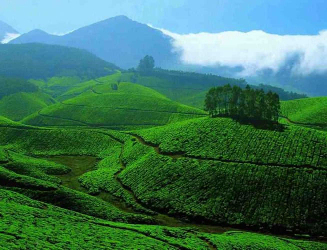 Mystical Kerala - 6 Days In Kerala