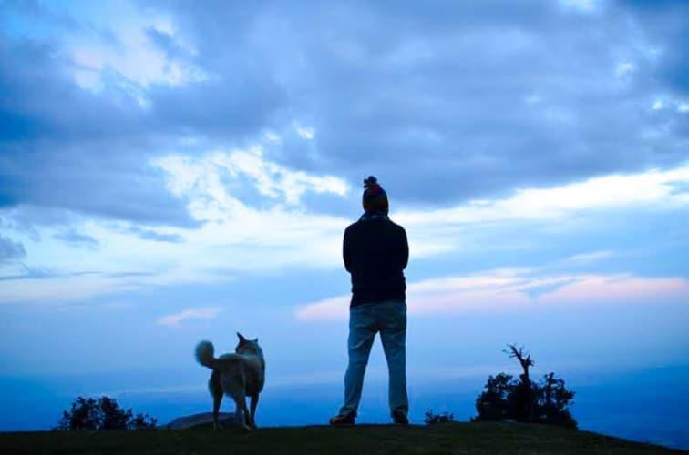 Mcleodganj Triund Camping & Trekking