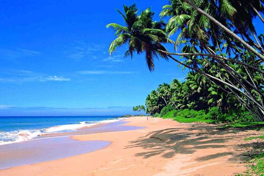 Sri Lanka Adventures