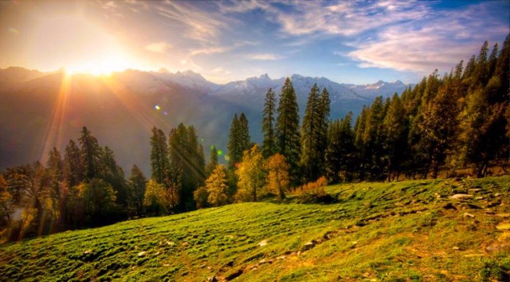 Hills of Shimla Manali; Family Holiday Package