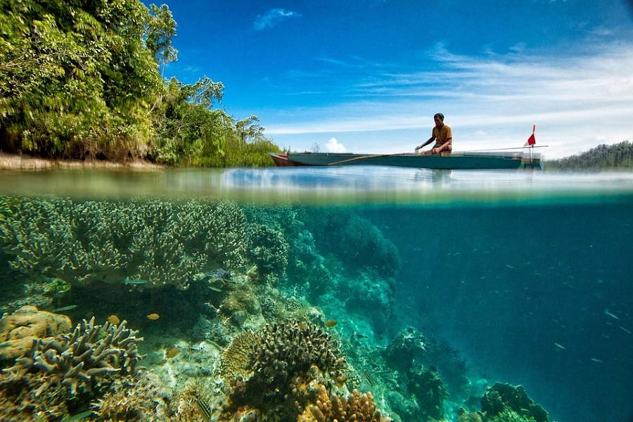 Thailand Holiday: Pattaya and Bangkok with Flights Ex Bangalore