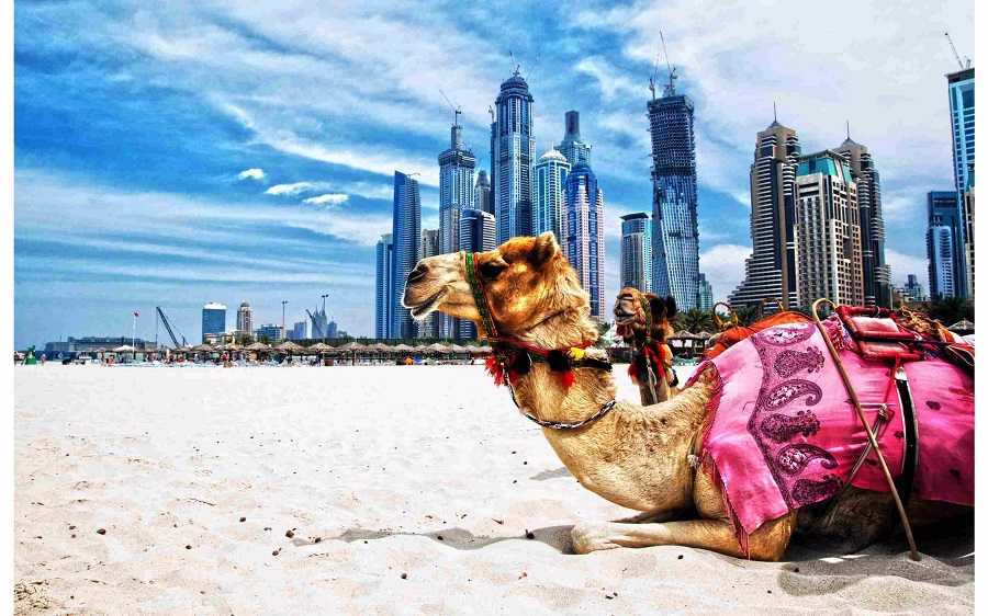 Delightful Dubai Honeymoon 4 Days Package