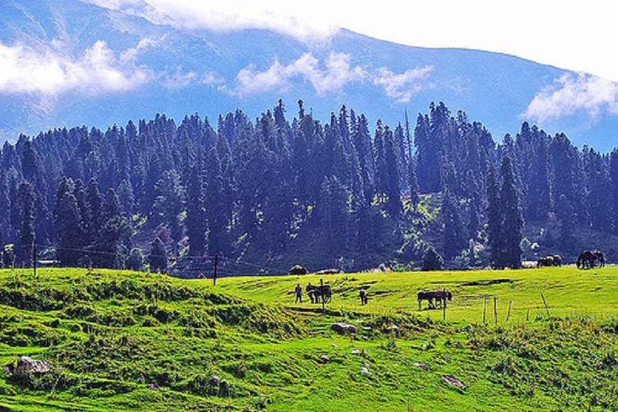 Paradise Kashmir Package with Stay in Houseboat
