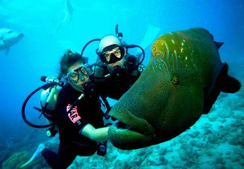 Andaman honeymoon package with scuba