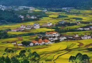 一名旅美华人学者2019年在四川农村的见闻