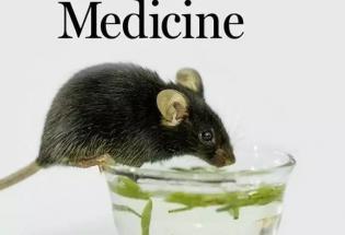 """""""喝茶""""就能控制血糖,中国学者开发人工定制化细胞,登上 Science 子刊封面"""