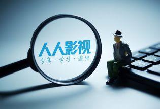 在版权争议背后,字幕组如何影响了翻译与人?