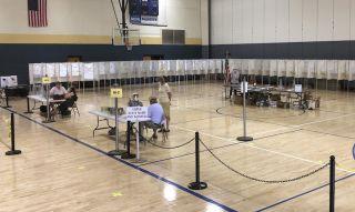 """2020年美国大选与""""优先排序投票"""""""