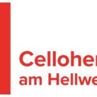 Celloherbst am Hellweg, DE