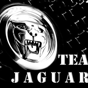 Jaguars%20team