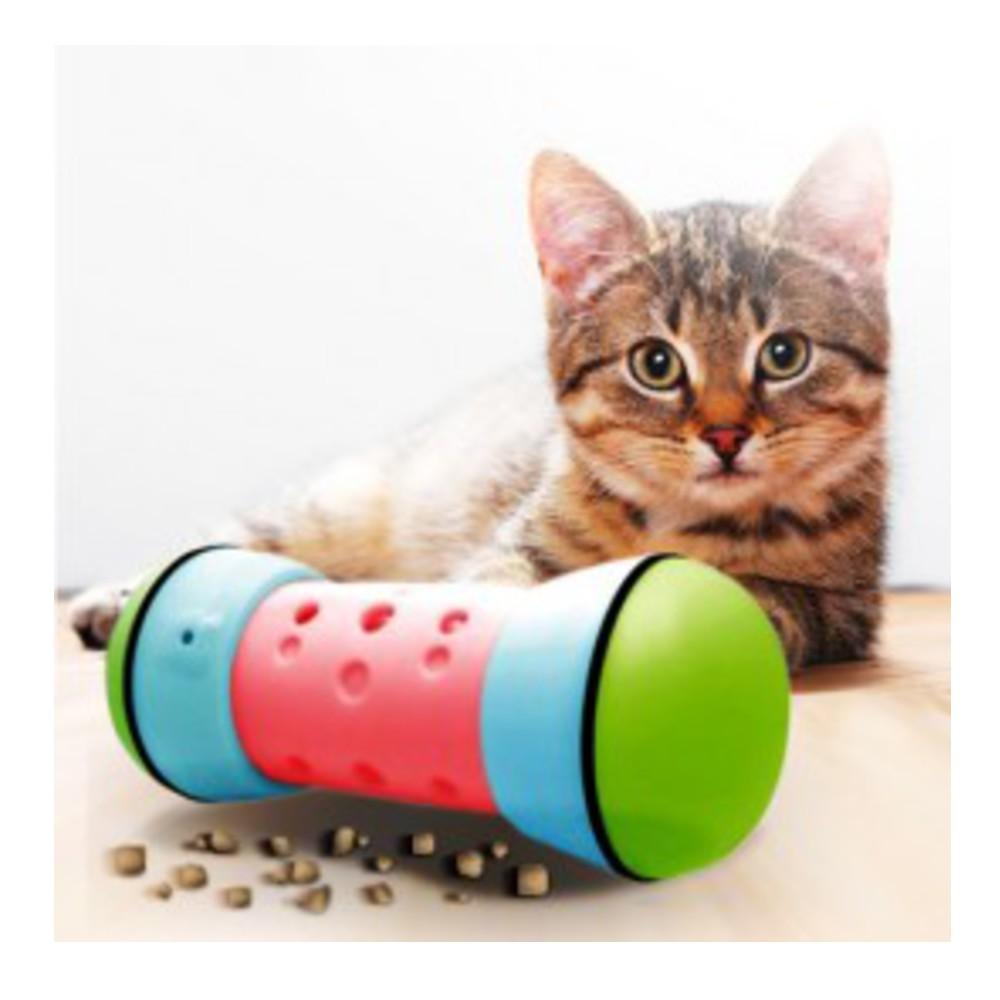 1-pipolino-cat