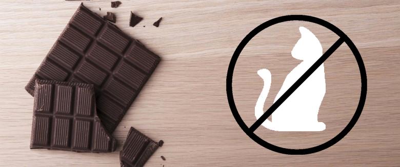 CHOCOLAT NOIR, MORTELLE GOURMANDISE
