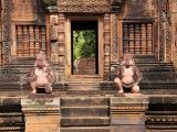 5D4N Discover Cambodia from SingExpress Travel