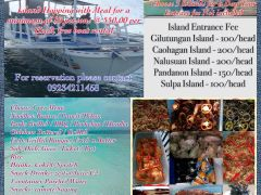 Cebu Island hopping with buffet from Debby Island Hopping and Tours