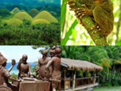 2 Days and 1 Night (2D/1N) Bohol Tour Package from Bohol Gateway Travel and Tours