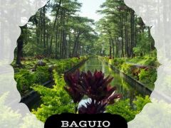 Baguio Tour Package from ST. MICHAEL EXPLORER TRAVEL AND TOURS