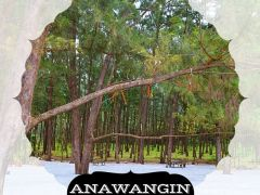 Anawangin Tour Package from ST. MICHAEL EXPLORER TRAVEL AND TOURS