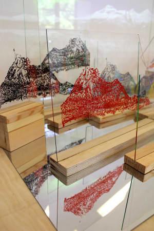 Congcong Wu - Art: Drawing and Conceptual Practice