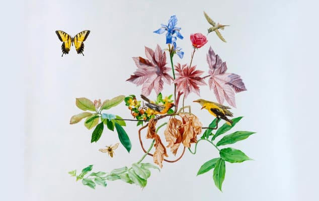 Staff Research Profiles A-Z. Image of work by Mark Fairnington, 'The Tiger Swallowtail Plant'.