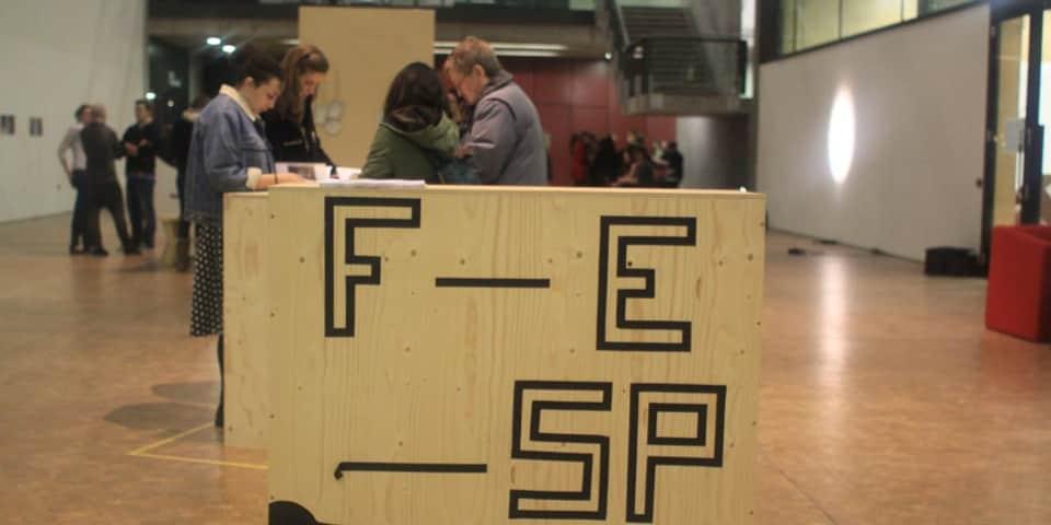 Free Elective Semester Programme (FESP)