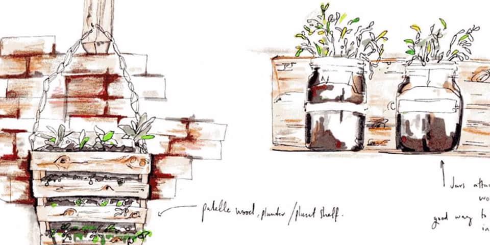 Planting sketch.