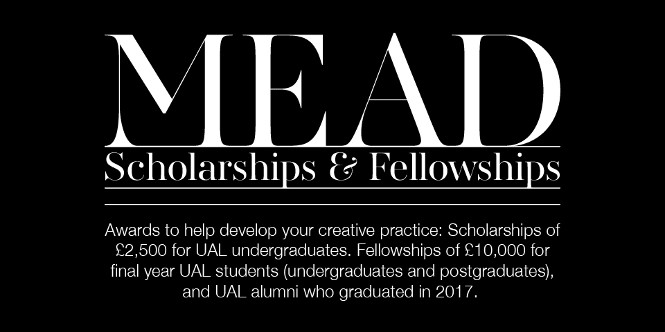MEAD scholarship and fellowship