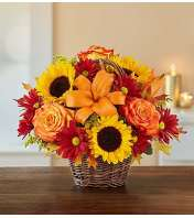 Fields of Europe™ for Fall Basket