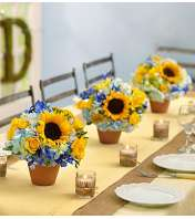 Country Wedding Centerpiece Package