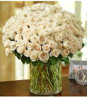 100 Premium White Roses in a Vase