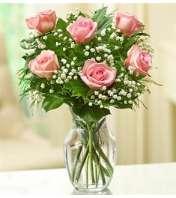 Rose Elegance™ Premium Pink Roses - 1/2 Dozen