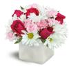 Vibrant Blooms™