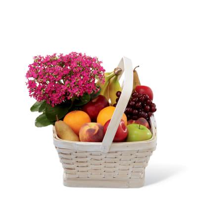 The FTD® Garden's Paradise™ Basket
