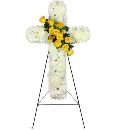 His Promise Cross Spray™
