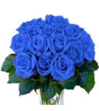 Blue roses in love
