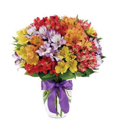 Pick Me Up Florist In Mount Laurel Flower Delivery Bright Pink And Lavender Followers Compactly Designed